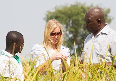 Farmer Ashai Abdul and his son meet with Ignitia chief executive Liisa Petrykowska in northern Ghana to discuss their use of Ignitia's rainfall forecast and its benefits for their rice crop. Courtesy Ignitia; Ike Nortey Focus Xtreme Photography, Accra, Ghana.