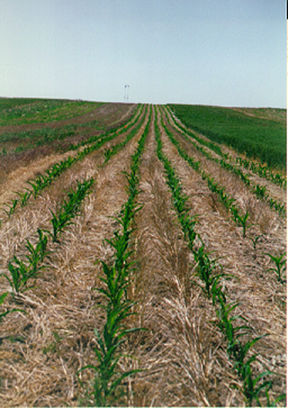 A recent big data analysis points to no-till farming (shown above) as an example of one of the best practices that could mitigate green house gas emissions in the Great Plains.