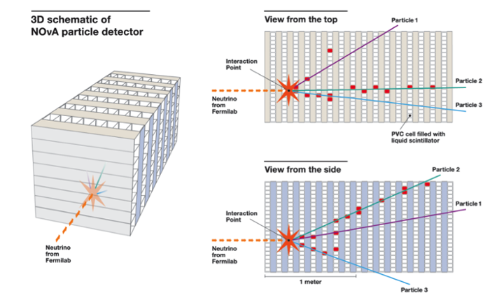 <strong>A 3D look at one of the first neutrino interactions captured in the NOvA far detector.</strong> The dotted red line represents the neutrino beam, generated at Fermilab in Illinois and sent through 500 miles of earth to the far detector. The image on the left is a simplified 3D view of the detector – the top right view shows the interaction from the top of the detector, and the bottom right view shows the interaction from the side of the detector. Courtesy Fermilab.
