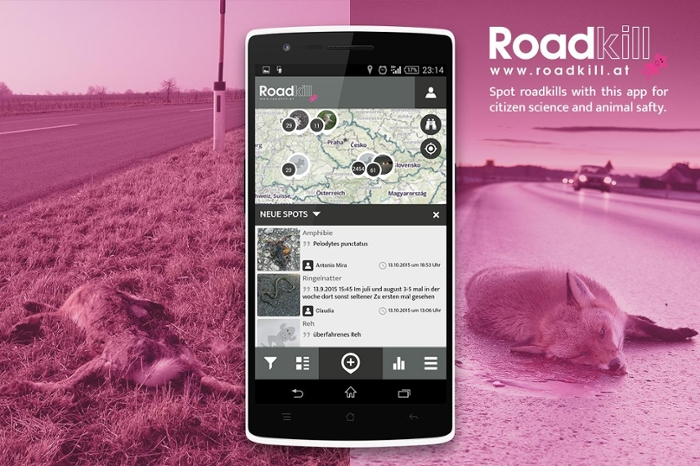 <strong>Keep your eyes on the road.</strong> By reporting roadkills you can provide data for scientific analysis and help identify hotspots at which roadway accidents occur frequently. Download the <a href='https://itunes.apple.com/us/app/roadkill-spotteron/id1007563102' target='_blank'>iPhone app here.</a> Download the <a href='https://play.google.com/store/apps/details?id=com.spotteron.roadkill' target='_blank'>Android app here</a>. Courtesy Florian Heigl; Spotteron.