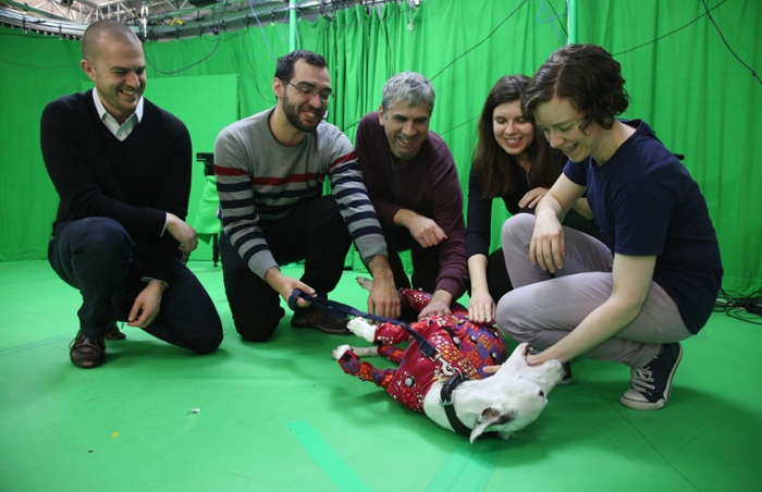 <strong>Dog tired.</strong> Tummy rubs are the reward for a hard day's work improving the future of animal representation on screen. Courtesy University of Bath.