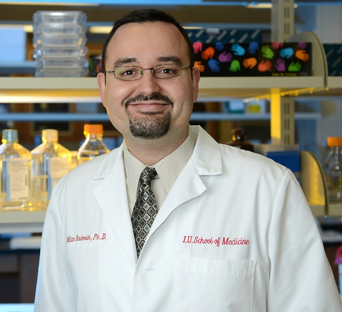 IU School of Medicine professor Milan Radovich studies transposable elements in DNA to better understand how they affect the development of cancers. His research may lead to precision treatments tailored to individuals' needs. Courtesy Indiana University.