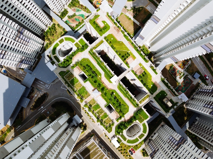<strong>Green roofs</strong> on urban buildings can improve stormwater management, conserve energy, and reduce noise and air pollution. Courtesy Unsplash/chuttersnap.