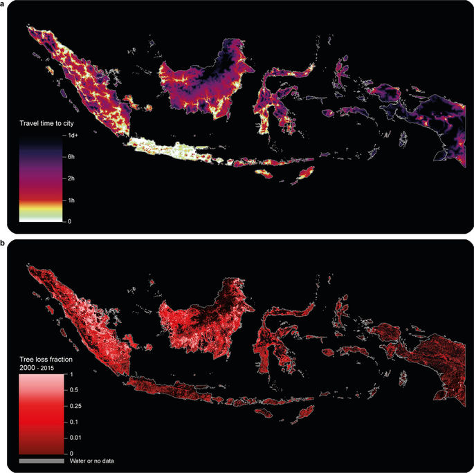 <strong>More roads = fewer forests.</strong> Despite beneficial aspects of short travel times to cities for humans, greater accessibility has an associated environmental cost, as shown here in Indonesia. Courtesy Daniel Weiss, University of Oxford.