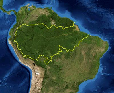 <strong>Biodiversity stronghold.</strong> The Amazon rainforest covers most of the Amazon river basin in South America, encompassing more than 2 million square miles. It is one of the most biodiverse tracts of tropical rainforest in the world. Courtesy NASA.