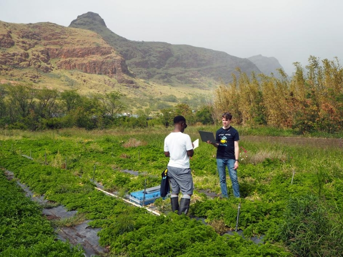 <strong>Encountering ahupua'a</strong>, the ancient Hawaiian system of land division to form self-sustaining ecosystems, helped the students understand the importance of looking for ways to help their community. Courtesy ASU.