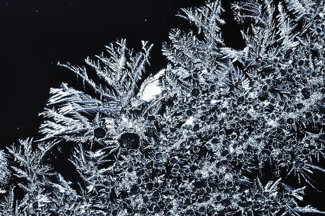 <strong>Natural antifreeze.</strong> A new process that can prevent water from freezing even at extremely cold temperatures was inspired by bacteria that live in extreme environments. It will allow scientists to better study molecular structures by preventing the formation of ice crystals.