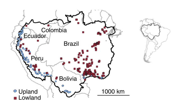 <strong>Achieving low carbon hydropower</strong> favors dams at higher elevations, but of 351 dams proposed in five countries of the Amazon basin, 65% are planned for lowland elevations and only 35% in uplands.  Courtesy Almeida, et al.