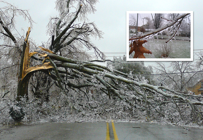 <strong>When it comes to freezing rain</strong>, the difference between downed power lines and chilly rain is only 1 degree Fahrenheit, making it hard for weather models to predict. Courtesy NOAA.