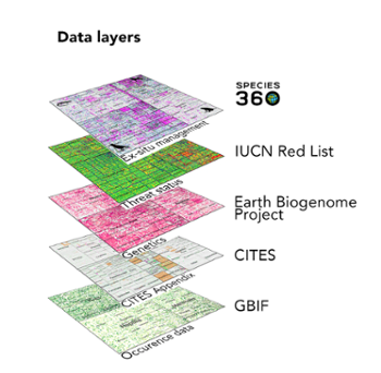 <strong>Layers of knowledge.</strong> This is a visualization of species knowledge mapping Conde and her colleagues are working on. Each layer is a map of available information for every mammal, bird, reptile, and amphibian. Each pixel is a species, and the color of the pixel indicates what information is available.